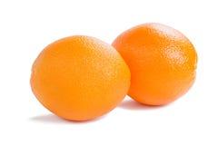 Group of orange fruits Royalty Free Stock Photo