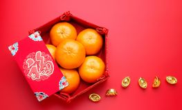 Group of orange tangerine in Chinese pattern tray and envelope p. Acket ang pow with gold ingots on red table top. Chinese new year concep.Chinese Language on Royalty Free Stock Photos