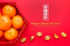 Group of orange tangerine in Chinese pattern tray with gold ingo. Ts on red table.Chinese Language on ingot mean wealthy and lable mean May you have a prosperous Royalty Free Stock Photography