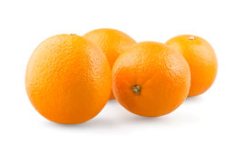 Group of oranges. On white background stock images