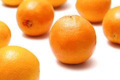 Group of oranges. On a white background Stock Photos