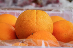 Group of oranges Royalty Free Stock Photos