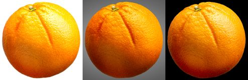 Group of oranges fruit on different background Royalty Free Stock Photos
