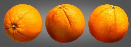 Group of oranges fruit  on grey background Royalty Free Stock Photo
