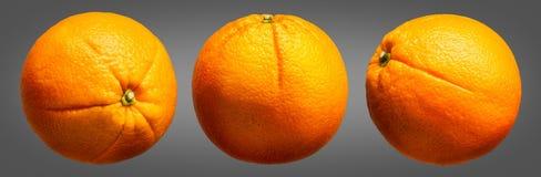 Group of oranges fruit isolated on grey background Stock Photography