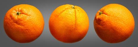 Group of oranges fruit isolated on grey background Royalty Free Stock Photos