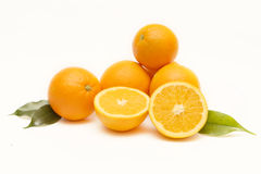 Group of oranges Stock Image