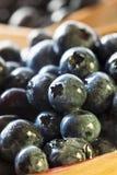 Group of Organic Blueberries Stock Photo