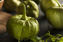 Group of Organic Green Tomatillos Stock Photography