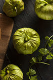 Group of Organic Green Tomatillos Royalty Free Stock Photo