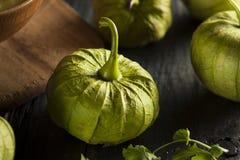 Group of Organic Green Tomatillos Royalty Free Stock Photos
