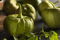 Group of Organic Green Tomatillos Royalty Free Stock Image