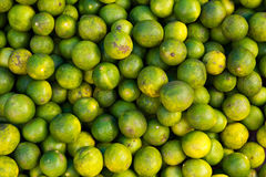 Group of organic Lime fruits Royalty Free Stock Images