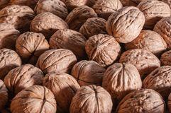 A group of organic walnuts. On a table Royalty Free Stock Photos
