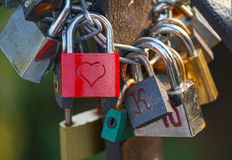 Group of padlocks Stock Images