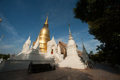 Group of Pagoda of Wat Suan Dok temple in Chiang Mai. Royalty Free Stock Photo
