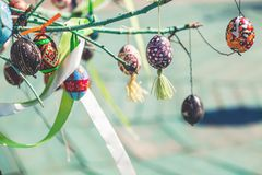 Group painted Easter eggs on tree branch Royalty Free Stock Images
