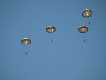Group of parachutists Royalty Free Stock Images