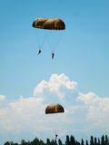 Group of parachutists Royalty Free Stock Photos