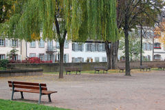Group of Park Benches Stock Photography