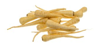 Parsnips on a white background Stock Photos