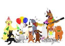Group of party animals. Group of funny cats and dogs, enjoying party time Stock Photo