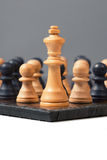 Group of Pawns fight against the King Royalty Free Stock Photography