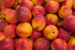 Group of Peaches Royalty Free Stock Photography