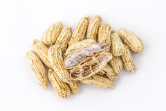 Group of peanut. Open peanut shell and group of peanut on white background Royalty Free Stock Images