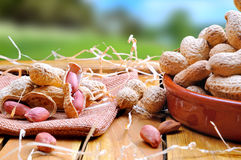 Group of peanuts on a wooden table in the field Stock Photography