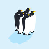 Group of penguins. Arctic animals on ice. Antarctic Birds. flock Royalty Free Stock Image