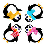 Group of Penguins in circle Royalty Free Stock Photography