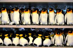 Group of Penguins Plush Toys Stock Photography