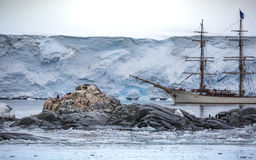 Group of penguins stand on stones in the middle of the water with snow. A large white ship stands behind stones with Stock Photography