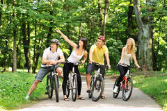 Group of people on a bicycles in a countryside Stock Image