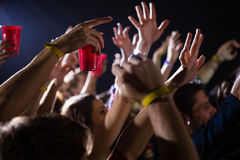 Group of people dancing at a concert Stock Images