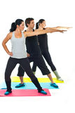 Group of people doing fitness royalty free stock photo