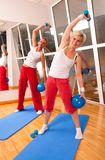 Group of people doing fitness exercise Stock Images