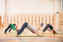 Group of people doing yoga downward facing dog pose on mats at studio royalty free stock photos