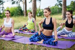 Group of people doing yoga on the green with fresh grass outdoors. Healthy lifestyle.  Stock Photography