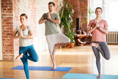 Group of people doing yoga tree pose at studio Stock Photos