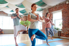 Group of people doing yoga tree pose at studio Royalty Free Stock Image