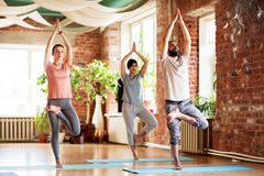 Group of people doing yoga tree pose at studio Royalty Free Stock Images