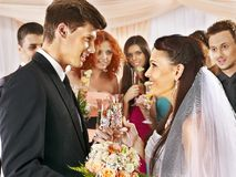 Group people drinking champagne at wedding. Stock Image
