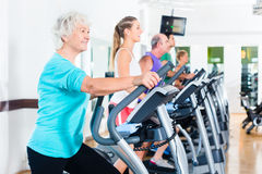 Group of people on elliptical trainer exercising in gym Stock Photography