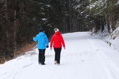Group of people enjoying a snowshoeing on a trail in winter. A g. Roup of people enjoying snowshoeing on a track in winter. Hike in extreme cold weather stock photography