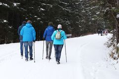 Group of people enjoying a snowshoeing on a trail in winter. A g. Roup of people enjoying snowshoeing on a track in winter. Hike in extreme cold weather royalty free stock photo