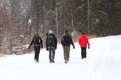 Group of people enjoying a snowshoeing on a trail in winter. A group of people enjoying snowshoeing on a track in winter. Hike in. Extreme cold weather stock photography