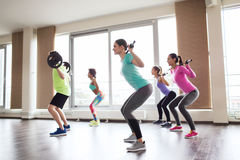 Group of people exercising with barbell in gym Royalty Free Stock Image