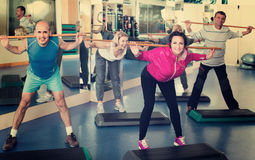 Group of people exercising in a fitness club. Group of positive russian people exercising in a fitness club stock photos